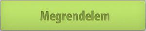 Marketing Audit 2013 megrendelés